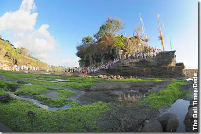 the-bali-times-tanah-lot.jpg